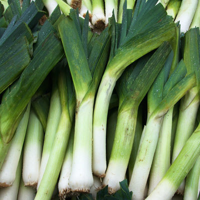 Leek is a crunchy and firm vegetable with a light onion-like taste.