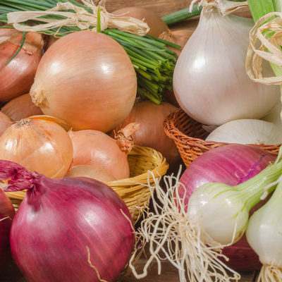 The onion is a member of the Allium family of vegetables and comes in different sizes, shapes, and colors.