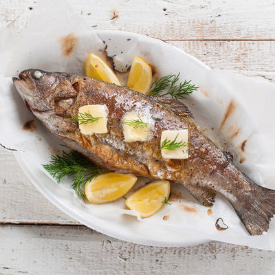 Trout is a freshwater fish that belongs to the Salmonidae family.