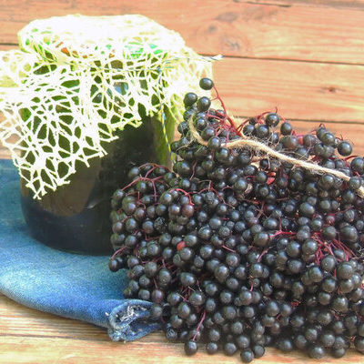 The elderberry is the fruit of the elder plant or Sambucus nigra.