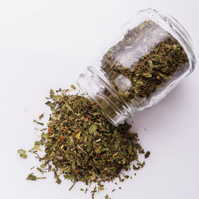 Tarragon (Artemisia dracunculus) is a perennial herb commonly used in folk medicine, as well as French and Russian cuisines.